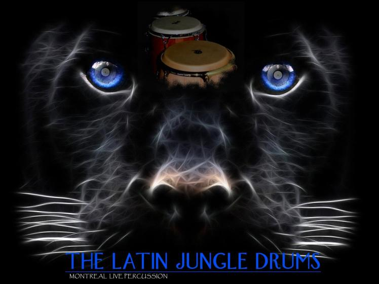 The LATIN  Jungle DRUMS